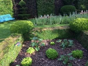 23 Libellules et pots dans le jardin carré/ dragon flies and jars in the square garden