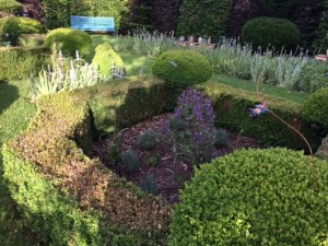 24 Libellules et pots dans le jardin carré : dragonflies and jars in the square garden 2