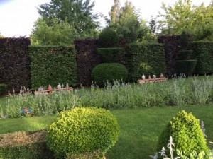 29 Rangés de pots de parfum devant les Hêtres / Perfume bottles in front of the hedges