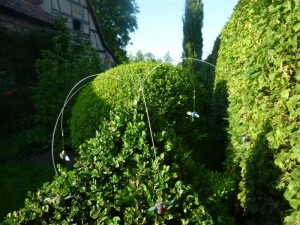 13 Mouches volantes au-dessus des topiaires/flies over the topiary (right side)